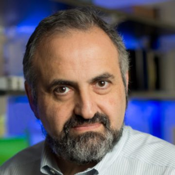 Dimitry Gabrilovitch, MD, PhD